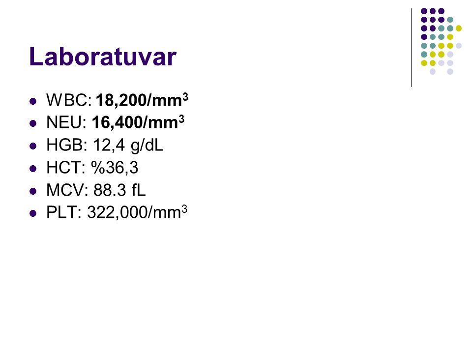 Laboratuvar WBC: 18,200/mm 3 NEU: 16,400/mm 3 HGB: 12,4 g/dL HCT: %36,3 MCV: 88.3 fL PLT: 322,000/mm 3