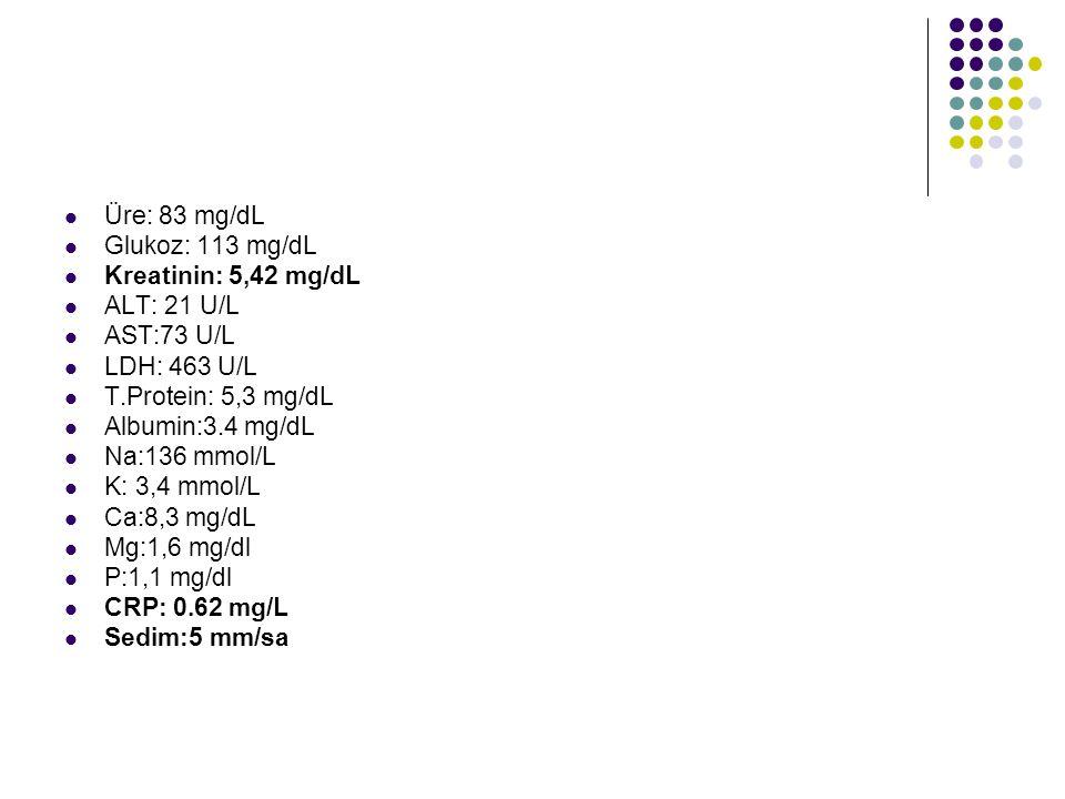 Üre: 83 mg/dL Glukoz: 113 mg/dL Kreatinin: 5,42 mg/dL ALT: 21 U/L AST:73 U/L LDH: 463 U/L T.Protein: 5,3 mg/dL Albumin:3.4 mg/dL Na:136 mmol/L K: 3,4