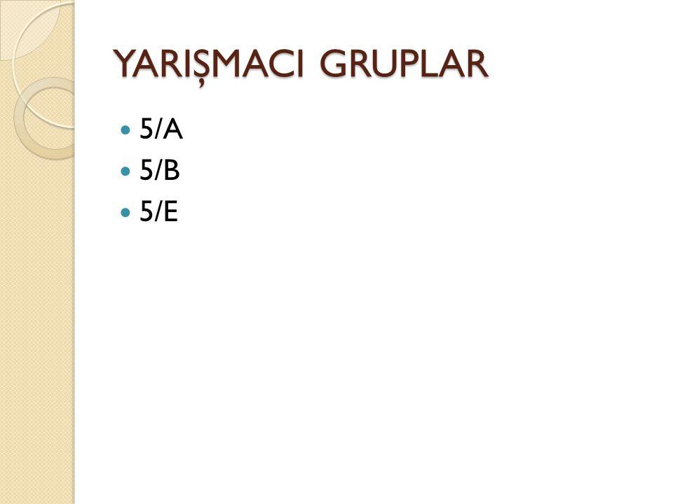 YARIŞMACI GRUPLAR 5/A 5/B 5/E