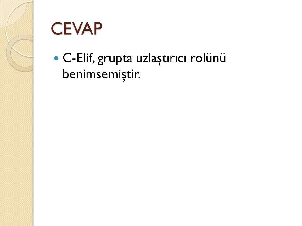 CEVAP C-Elif, grupta uzlaştırıcı rolünü benimsemiştir.
