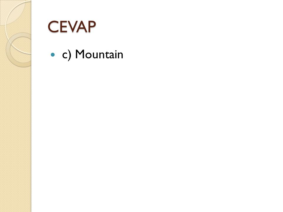 CEVAP c) Mountain