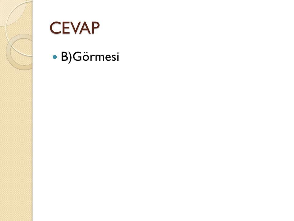CEVAP B)Görmesi