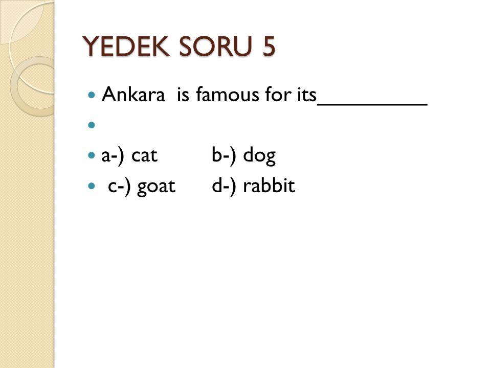 YEDEK SORU 5 Ankara is famous for its_________ a-) cat b-) dog c-) goat d-) rabbit