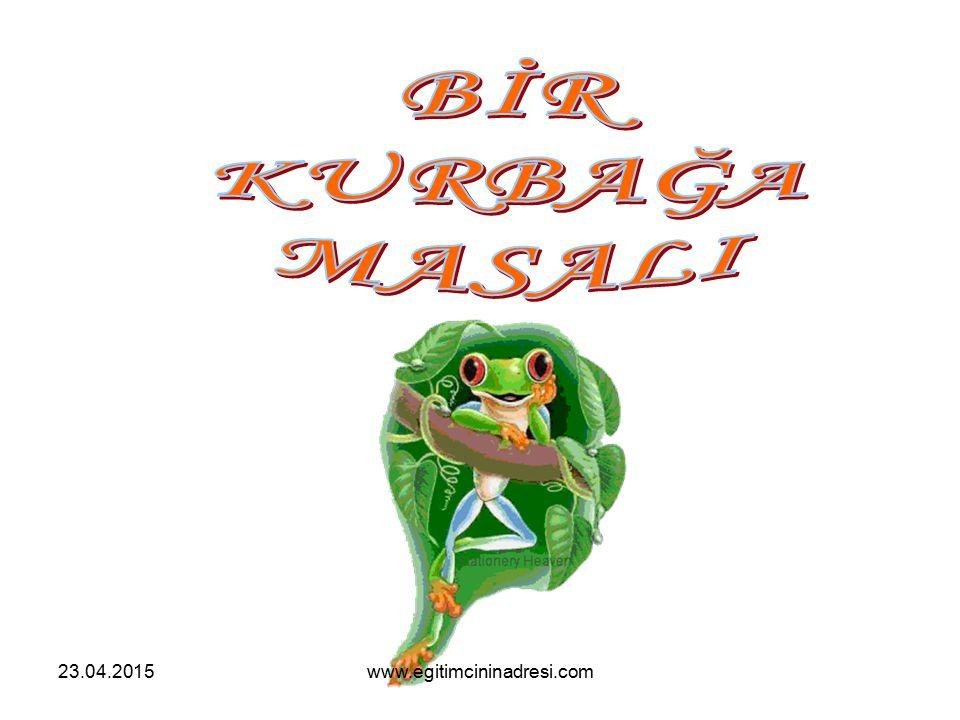 23.04.2015www.egitimcininadresi.com