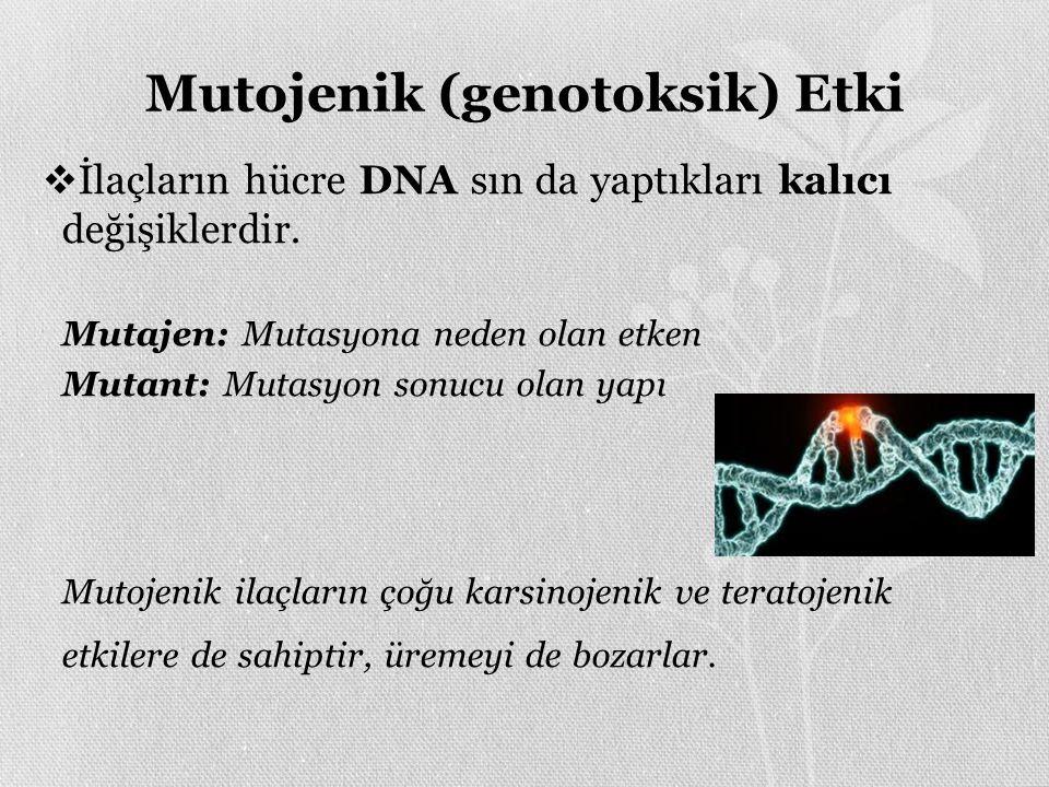 Mutojenik (genotoksik) Etki  İlaçların hücre DNA sın da yaptıkları kalıcı değişiklerdir.