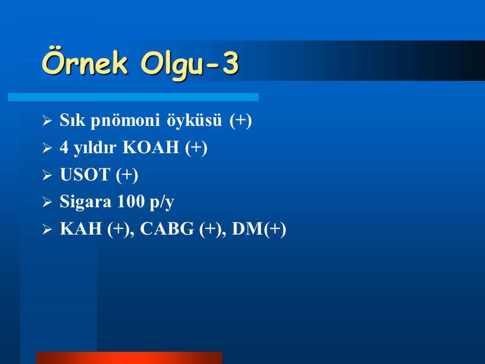 Örnek Olgu-3  Sık pnömoni öyküsü (+)  4 yıldır KOAH (+)  USOT (+)  Sigara 100 p/y  KAH (+), CABG (+), DM(+)