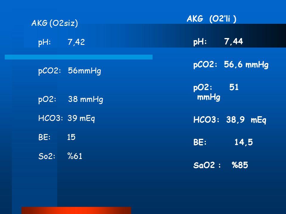 AKG (O2'li ) pH: 7,44 pCO2: 56,6 mmHg pO2: 51 mmHg HCO3: 38,9 mEq BE: 14,5 SaO2 : %85 AKG (O2siz) pH: 7,42 pCO2: 56mmHg pO2: 38 mmHg HCO3: 39 mEq BE: