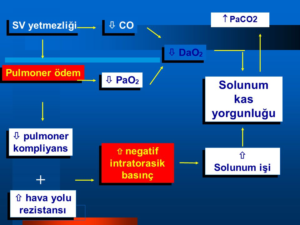 SV yetmezliği Pulmoner ödem  pulmoner kompliyans  hava yolu rezistansı  negatif intratorasik basınç  Solunum işi  Solunum işi  CO  PaO 2 Solunu