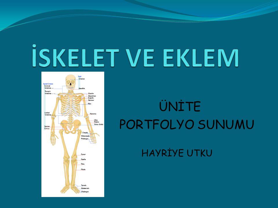ÜNİTE PORTFOLYO SUNUMU HAYRİYE UTKU