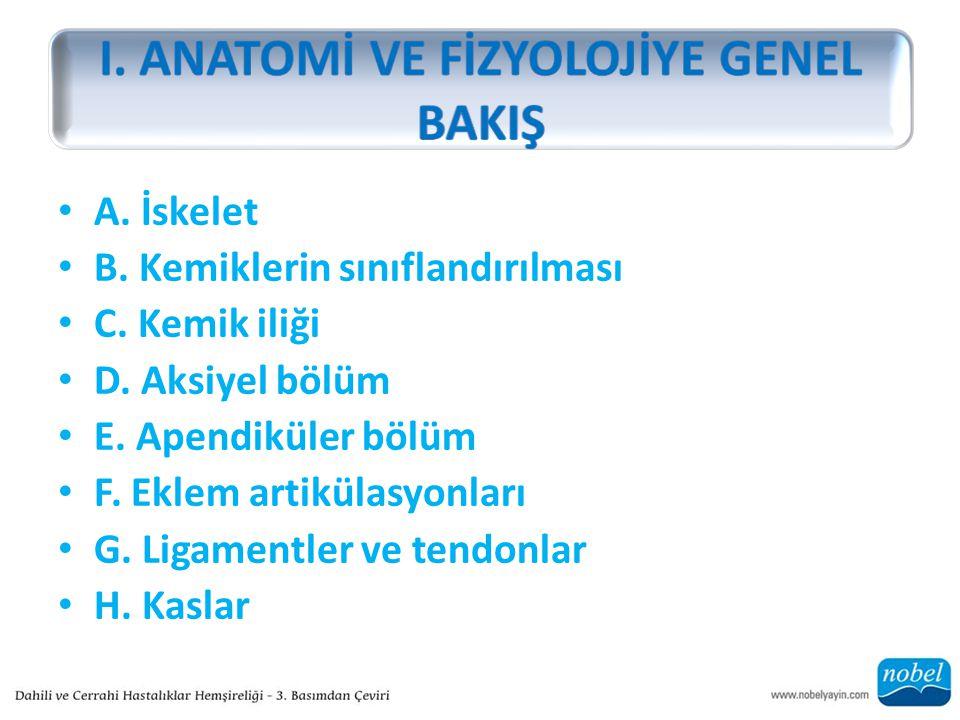 A. İskelet B. Kemiklerin sınıflandırılması C. Kemik iliği D. Aksiyel bölüm E. Apendiküler bölüm F. Eklem artikülasyonları G. Ligamentler ve tendonlar