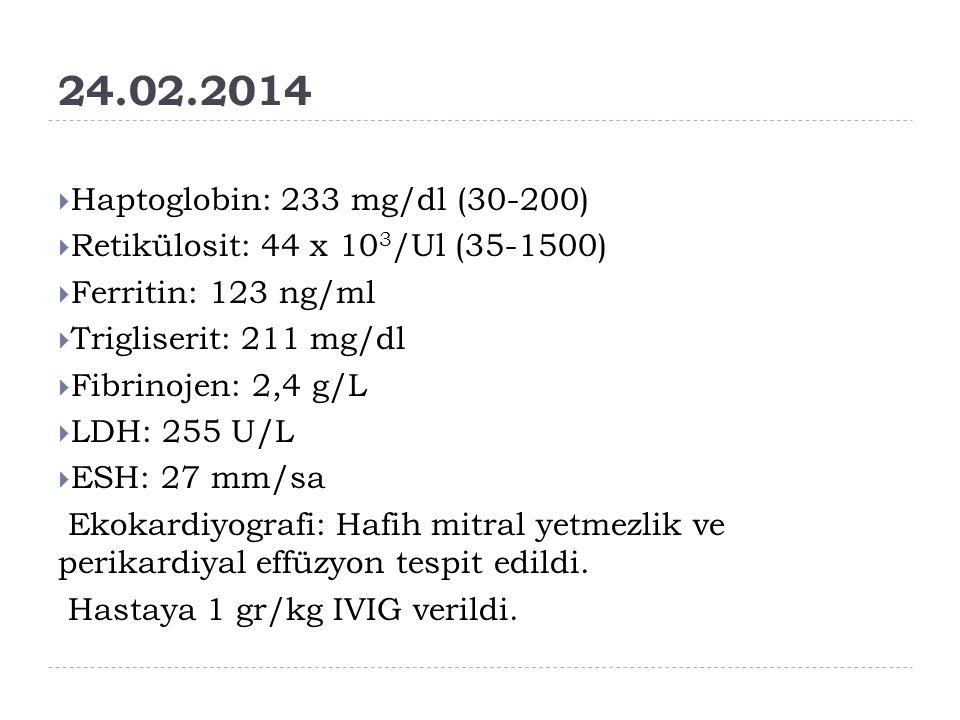 24.02.2014  Haptoglobin: 233 mg/dl (30-200)  Retikülosit: 44 x 10 3 /Ul (35-1500)  Ferritin: 123 ng/ml  Trigliserit: 211 mg/dl  Fibrinojen: 2,4 g