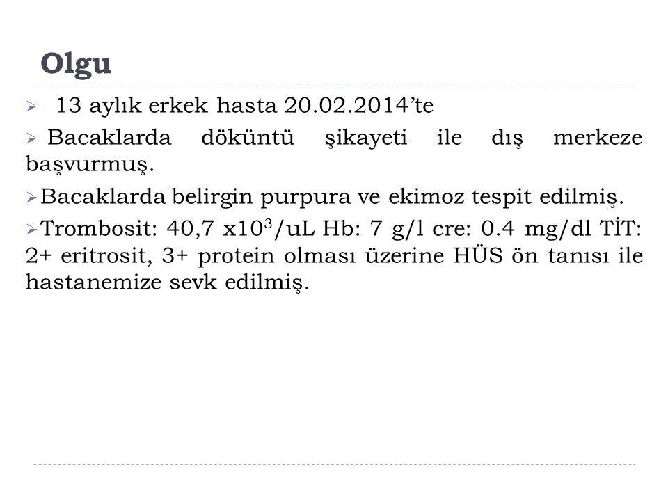 25.02.2014  TİT: protein 650 Kan 3+ protein/kreatinin: 8,2  İdrar sedimenti temiz idi.