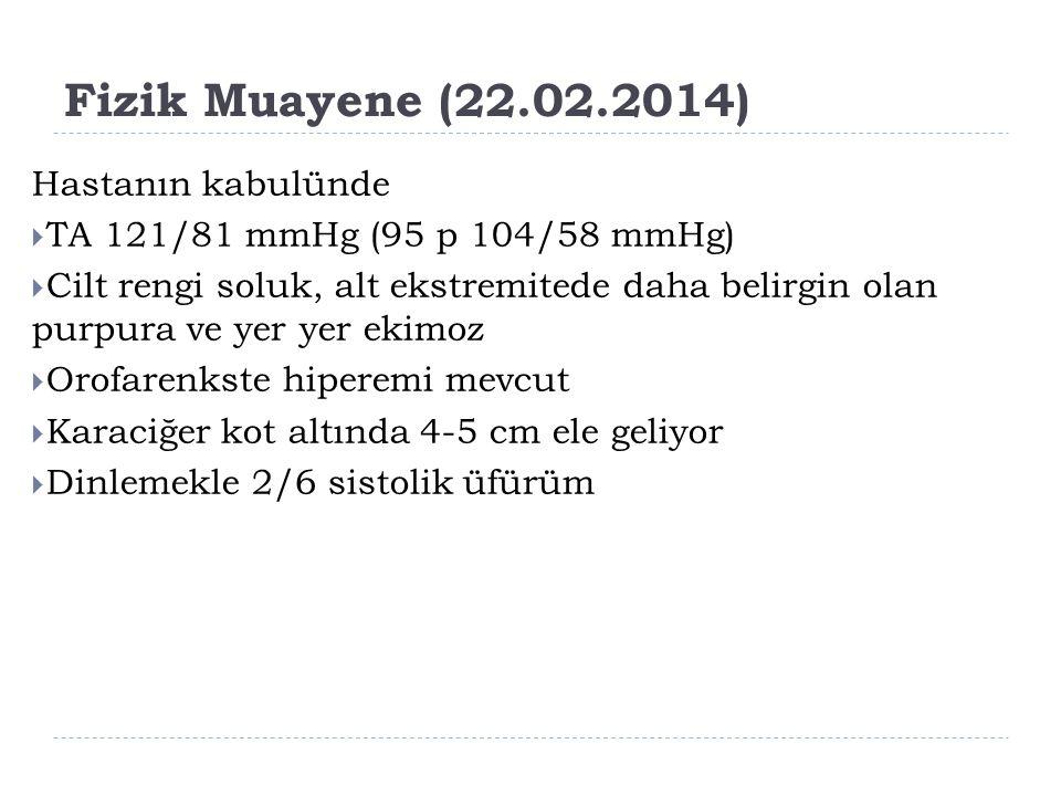 Fizik Muayene (22.02.2014) Hastanın kabulünde  TA 121/81 mmHg (95 p 104/58 mmHg)  Cilt rengi soluk, alt ekstremitede daha belirgin olan purpura ve y