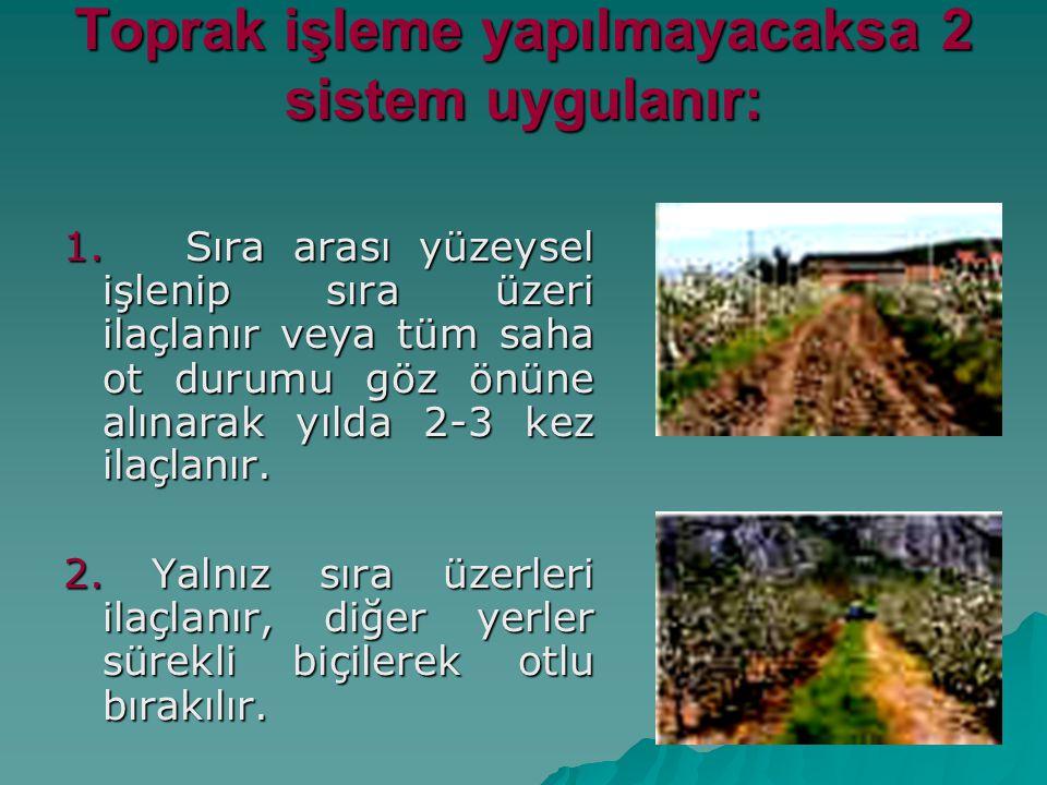 Toprak işleme yapılmayacaksa 2 sistem uygulanır: 1. Sıra arası yüzeysel işlenip sıra üzeri ilaçlanır veya tüm saha ot durumu göz önüne alınarak yılda