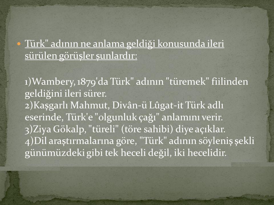 Türk adının ne anlama geldiği konusunda ileri sürülen görüşler şunlardır: 1)Wambery, 1879 da Türk adının türemek fiilinden geldiğini ileri sürer.