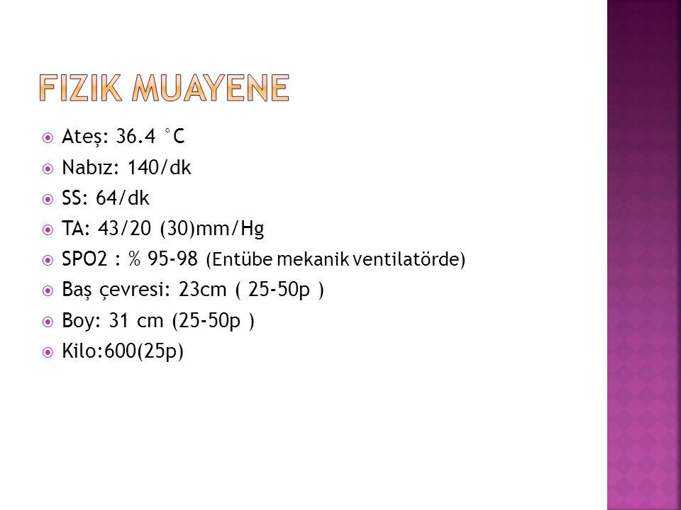  Ateş: 36.4 °C  Nabız: 140/dk  SS: 64/dk  TA: 43/20 (30)mm/Hg  SPO2 : % 95-98 (Entübe m ekanik v entilatörde)  Baş çevresi: 23cm ( 25-50p )  Boy: 31 cm (25-50p )  Kilo:600(25p)