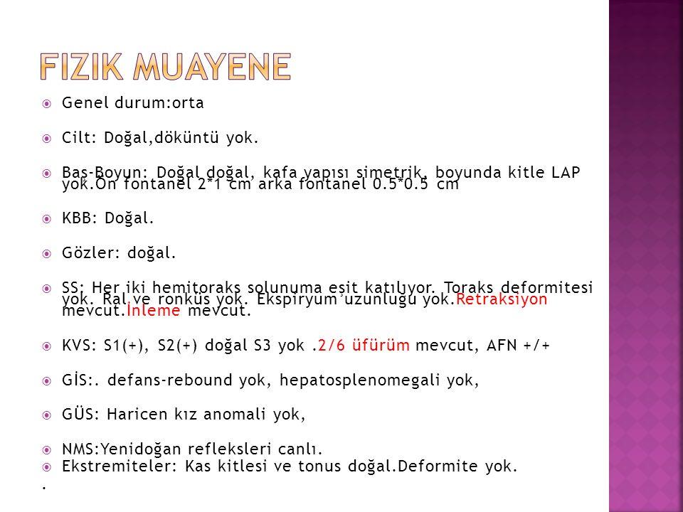  WBC: 11700 /mm³  ANS: 3290/mm³  HGB: 11.5/dl  PLT: 268000 /mm³  MCV: 100 fl  CRP: 0.09 mg/dl  TFUS: Normal  Glukoz: 83 mg/dl  Üre : 49 mg/dl  Kreatinin: 0,4 mg/dl  AST: 198 U/L  ALT: 114 U/L  Na: 135 mEq/L  K: 4,3 mEq/L  Ca: 9 mg/dl  D.Ca: 9,6 mg/dl  Mg: 1,9 mg/dl  Ürik asit :1,7 mg/dl  Albümin: 3,1 g/dl