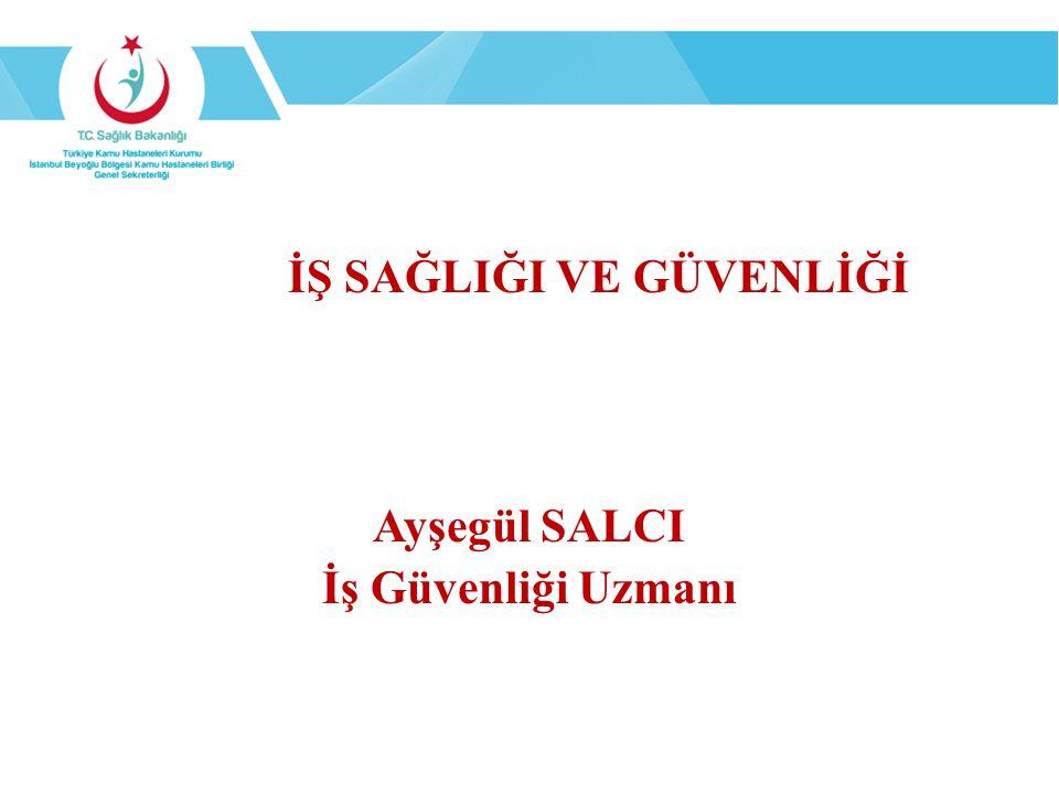 Amaç İstanbul İli Beyoğlu Kamu Hastaneleri Birliği Genel Sekreterliğine bağlı sağlık tesislerinde çalışanların, sağlık tesislerinde hizmet verilmesi esnasında İş Sağlığı ve Güvenliği Uygulamaları hakkında bilgilendirilmesi