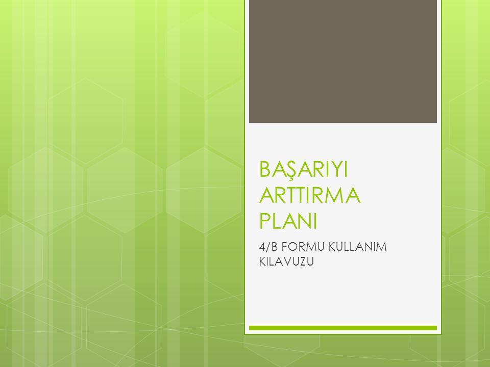 BAŞARIYI ARTTIRMA PLANI 4/B FORMU KULLANIM KILAVUZU