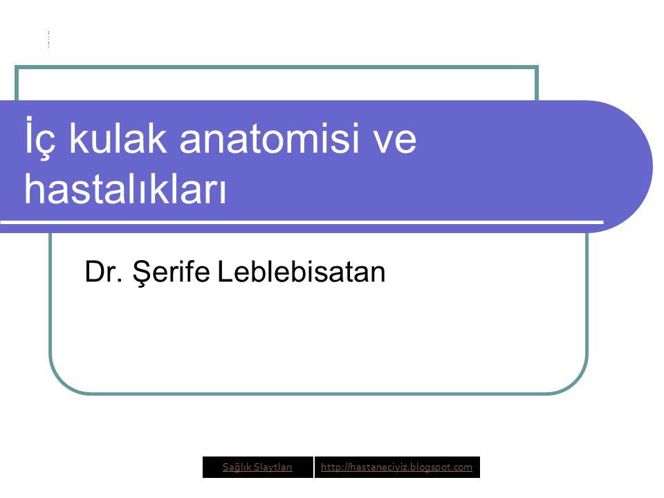 İç kulak anatomisi ve hastalıkları Dr.