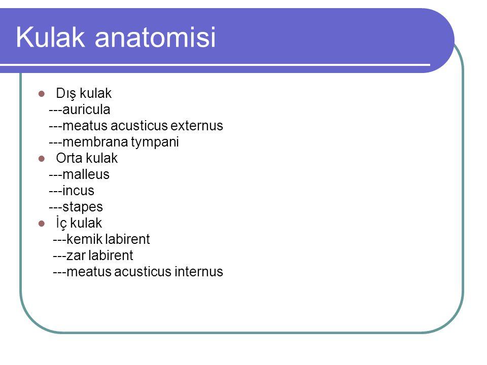 Labyrinthitis ossificans Etyoloji -süpüratif labirentit -travma - ciddi otoskleroz - cerrahi - tümörler Lümen boyutunda azalma etkilenen kulak yapılarında skleroz Dead ear