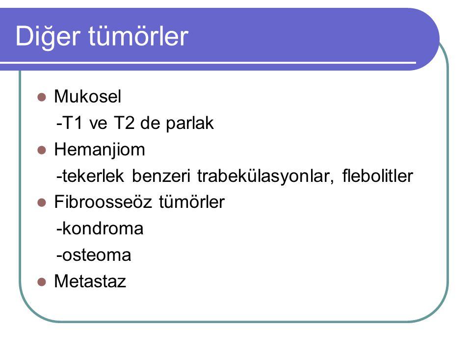 Diğer tümörler Mukosel -T1 ve T2 de parlak Hemanjiom -tekerlek benzeri trabekülasyonlar, flebolitler Fibroosseöz tümörler -kondroma -osteoma Metastaz