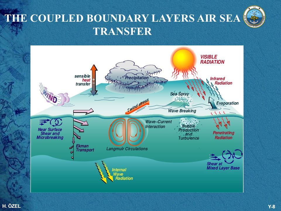 H. ÖZEL Y-8 THE COUPLED BOUNDARY LAYERS AIR SEA TRANSFER