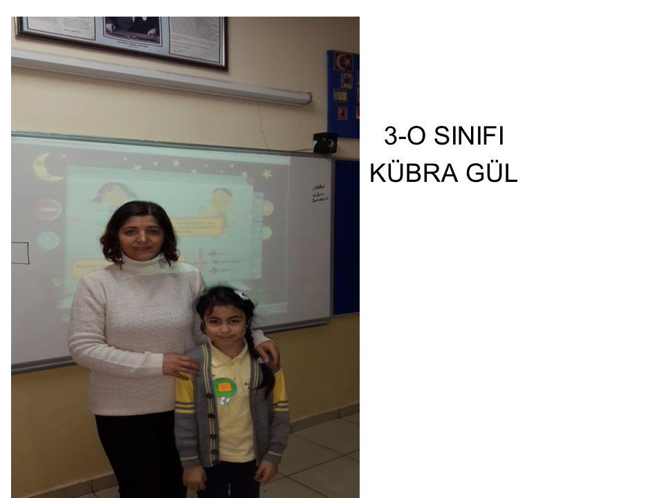 3-B SINIFI NEHİR KONUK