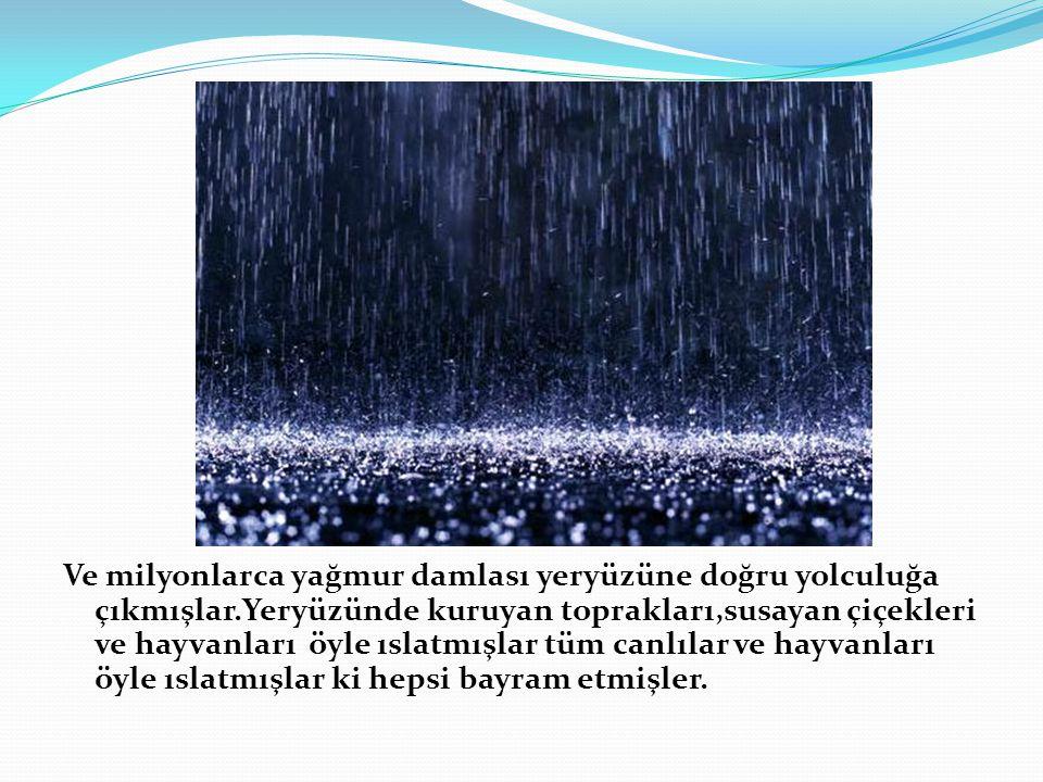 Ve milyonlarca yağmur damlası yeryüzüne doğru yolculuğa çıkmışlar.Yeryüzünde kuruyan toprakları,susayan çiçekleri ve hayvanları öyle ıslatmışlar tüm canlılar ve hayvanları öyle ıslatmışlar ki hepsi bayram etmişler.