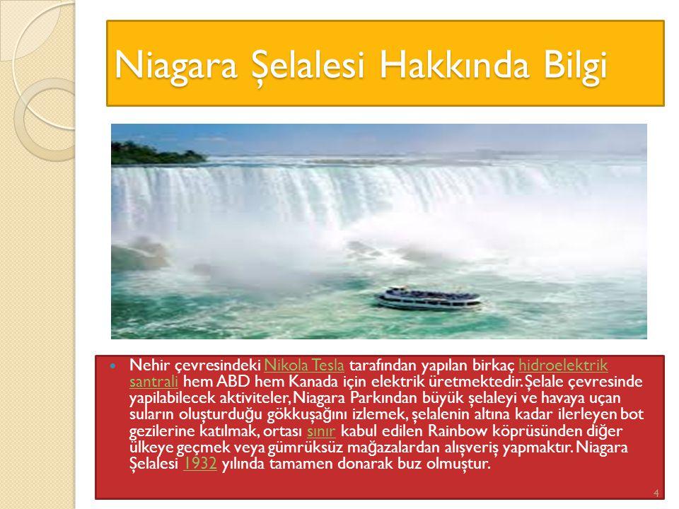 Niagara Şelalesi Hakkında Bilgi Nehir çevresindeki Nikola Tesla tarafından yapılan birkaç hidroelektrik santrali hem ABD hem Kanada için elektrik üretmektedir.