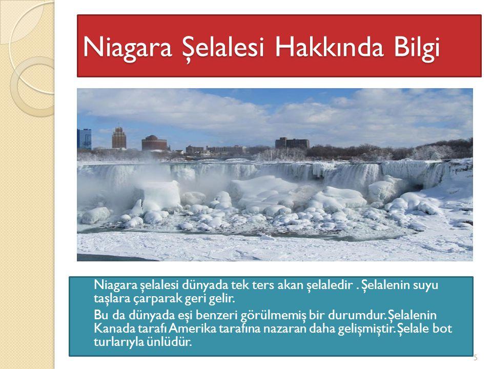 Niagara şelalesi dünyada tek ters akan şelaledir.Şelalenin suyu taşlara çarparak geri gelir.