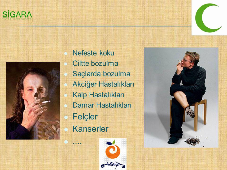 Sigarada 4 bin çeşit kimyasal madde (zehir) bulunur.