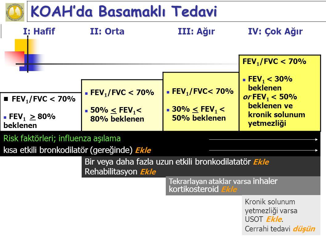 KOAH'da yaşam kalitesi: Hangi ilaçlar etkili? Chavannes NH and Schayck P. Biodrugs 2000