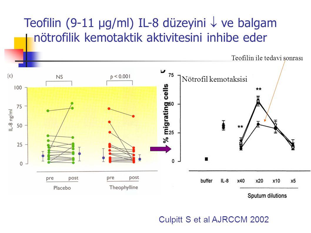 Oral teofilinin 4 hafta sonunda (9-11 µg/l) KOAH'lı hastalarda balgam nötrofilisi düzeyine etkisi Culpitt S et al AJRCCM 2002