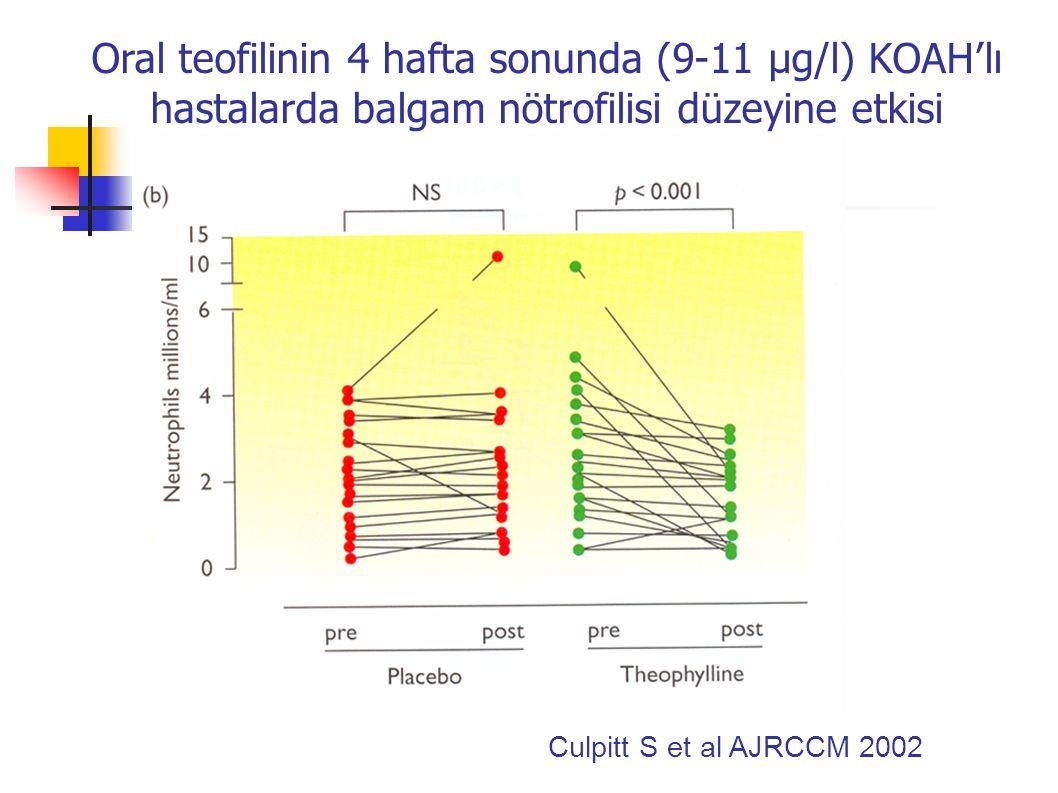 Oral teofilinin 4 hafta sonunda (9-11 µg/l) KOAH'lı hastalarda balgam MPO düzeyine etkisi Culpitt S et al AJRCCM 2002