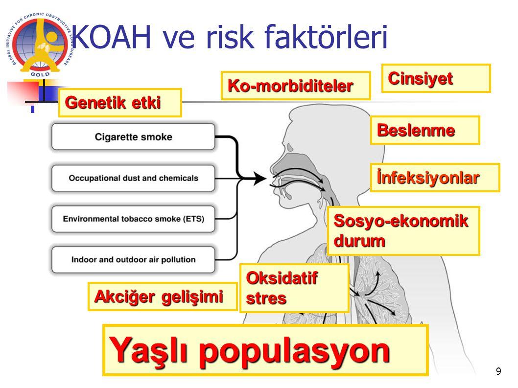 Risk faktörleri  inflamasyon