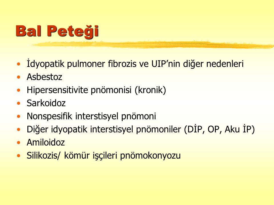 Bal Peteği İdyopatik pulmoner fibrozis ve UIP'nin diğer nedenleri Asbestoz Hipersensitivite pnömonisi (kronik) Sarkoidoz Nonspesifik interstisyel pnöm