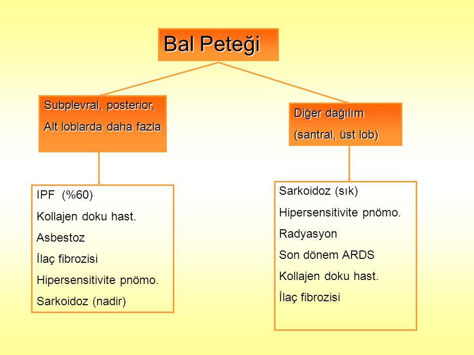 Bal Peteği Subplevral, posterior, Alt loblarda daha fazla Diğer dağılım (santral, üst lob) IPF (%60) Kollajen doku hast. Asbestoz İlaç fibrozisi Hiper