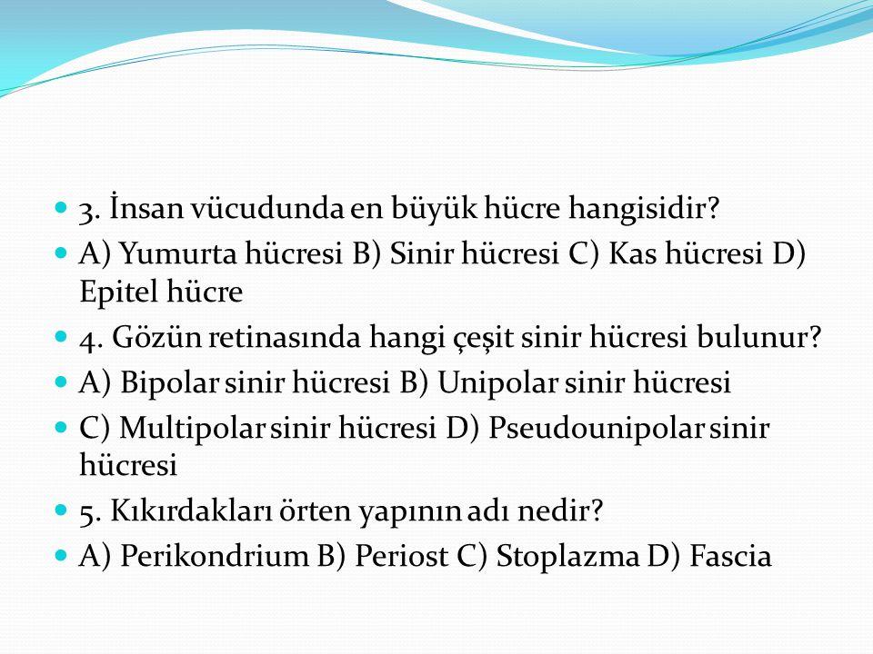 3. İnsan vücudunda en büyük hücre hangisidir? A) Yumurta hücresi B) Sinir hücresi C) Kas hücresi D) Epitel hücre 4. Gözün retinasında hangi çeşit sini