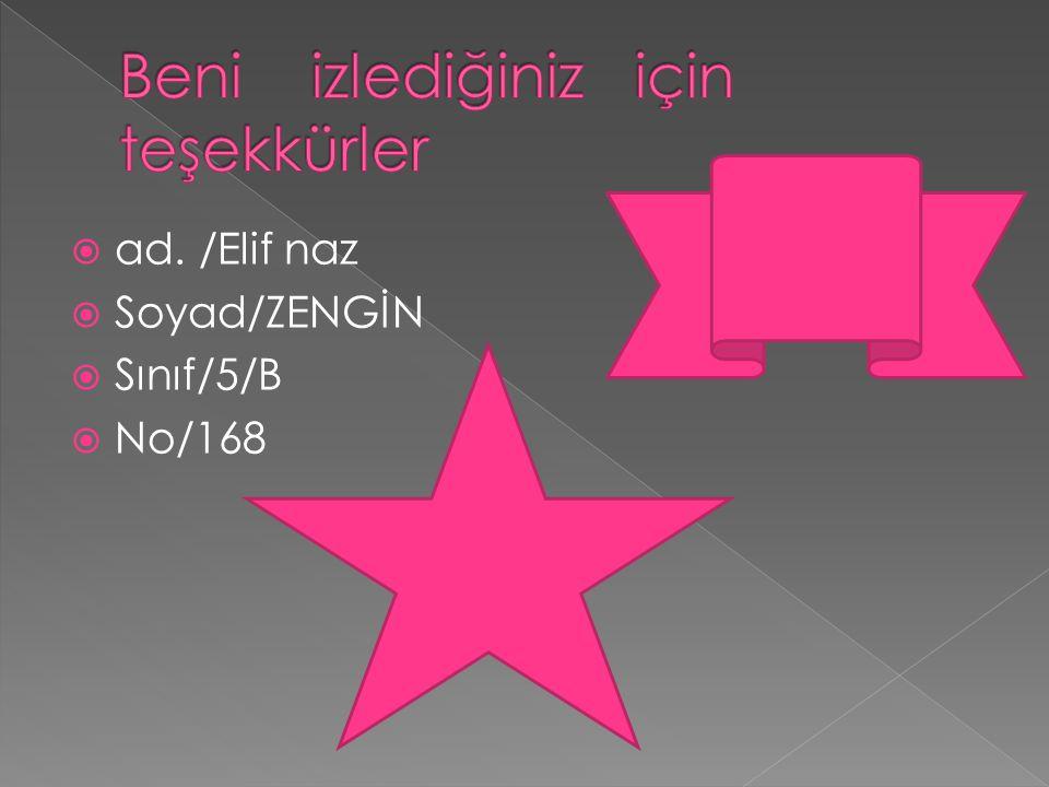  ad. /Elif naz  Soyad/ZENGİN  Sınıf/5/B  No/168