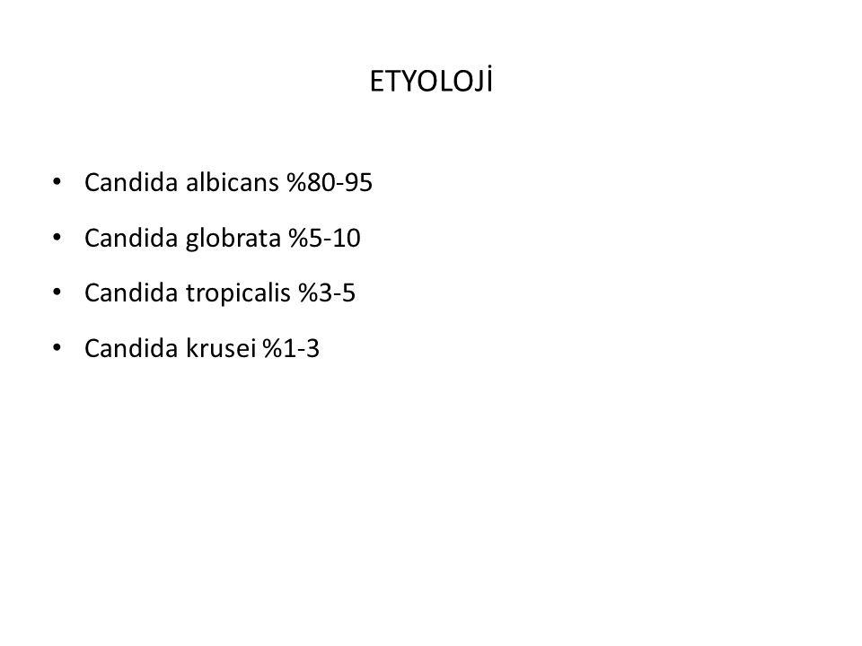 ETYOLOJİ Candida albicans %80-95 Candida globrata %5-10 Candida tropicalis %3-5 Candida krusei %1-3