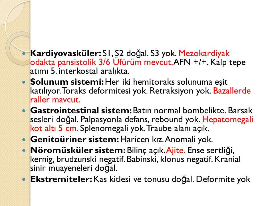 Kardiyovasküler: S1, S2 do ğ al. S3 yok. Mezokardiyak odakta pansistolik 3/6 Üfürüm mevcut.