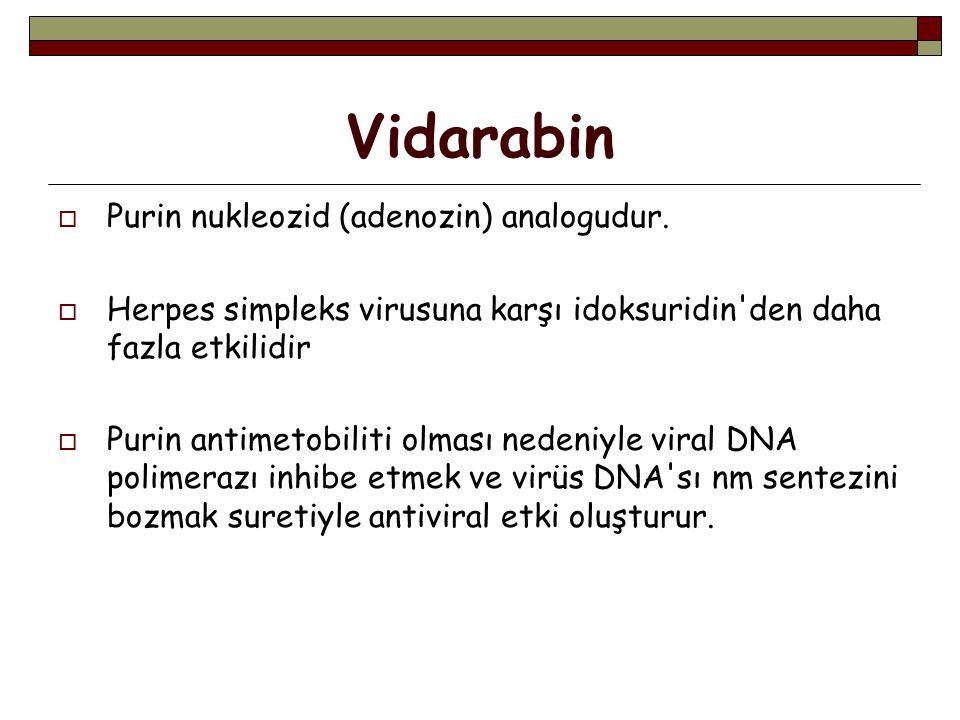 Vidarabin  Purin nukleozid (adenozin) analogudur.