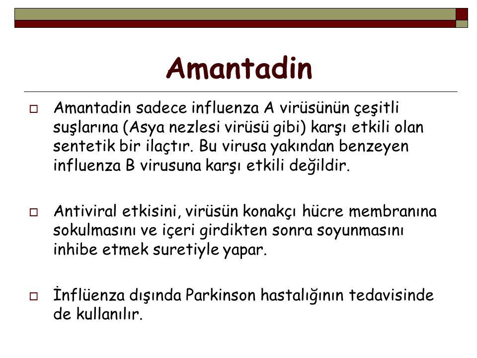 Amantadin  Amantadin sadece influenza A virüsünün çeşitli suşlarına (Asya nezlesi virüsü gibi) karşı etkili olan sentetik bir ilaçtır.