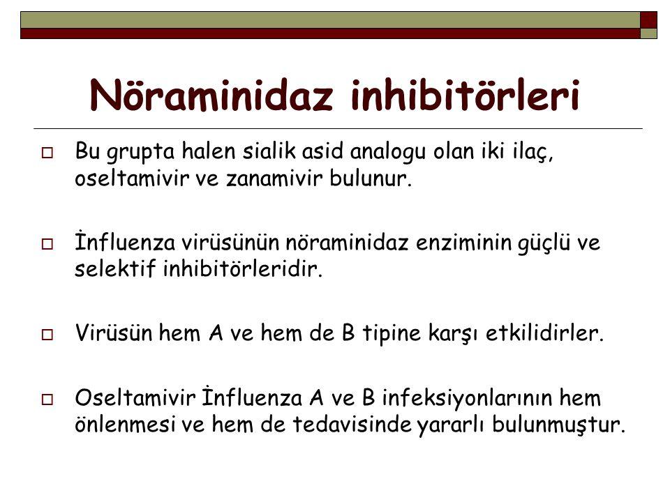 Nöraminidaz inhibitörleri  Bu grupta halen sialik asid analogu olan iki ilaç, oseltamivir ve zanamivir bulunur.