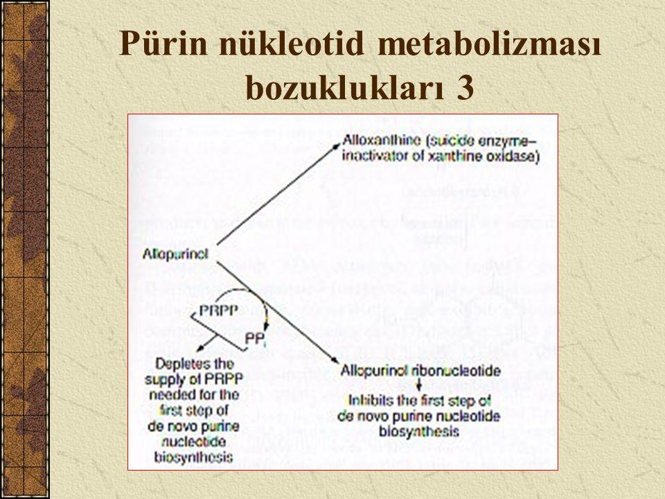 Pürin nükleotid metabolizması bozuklukları 3