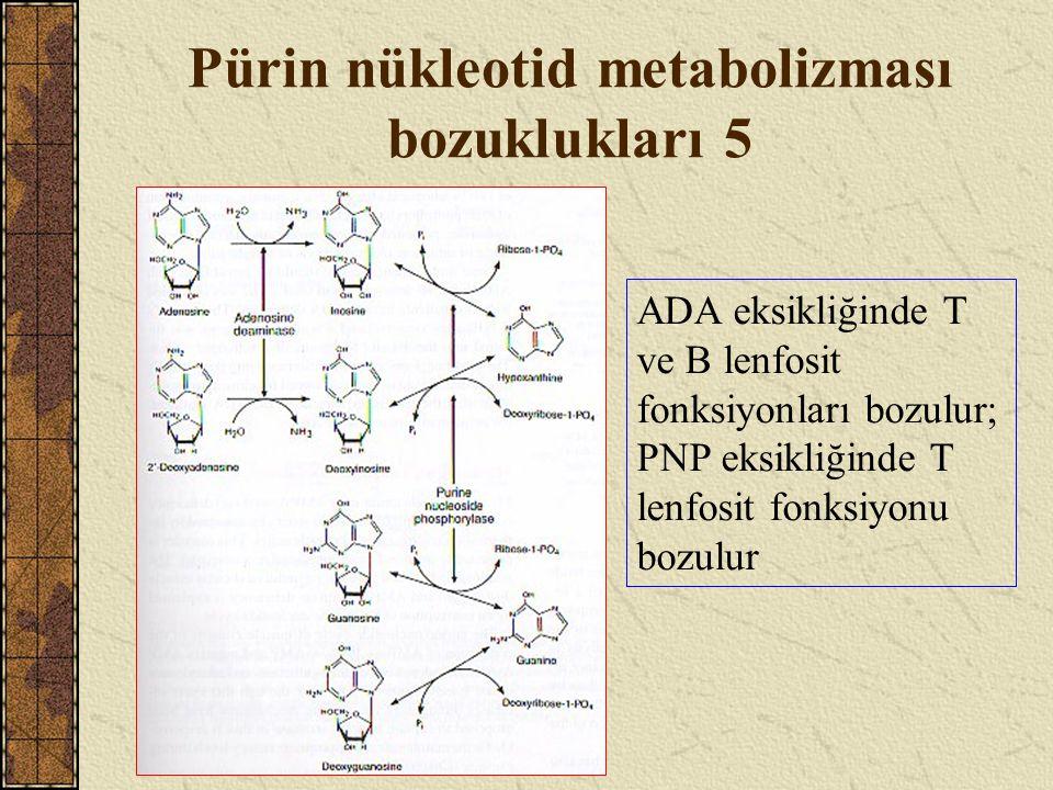 Pürin nükleotid metabolizması bozuklukları 5 ADA eksikliğinde T ve B lenfosit fonksiyonları bozulur; PNP eksikliğinde T lenfosit fonksiyonu bozulur