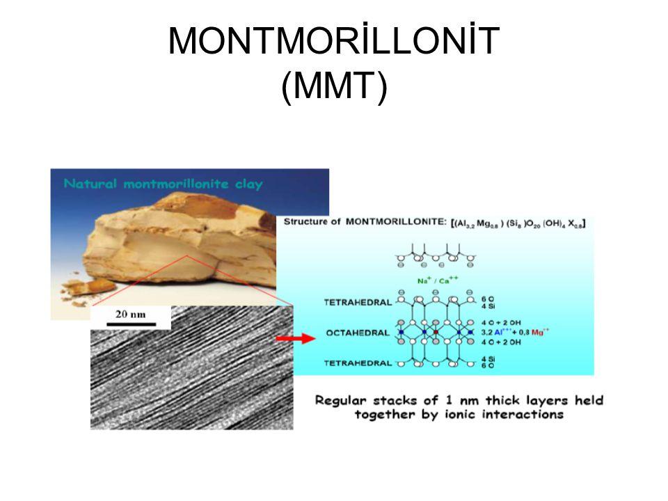 MONTMORİLLONİT (MMT)