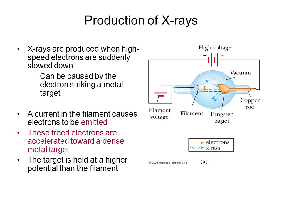 Production of X-rays X-rays are produced when high- speed electrons are suddenly slowed down –Can be caused by the electron striking a metal target A