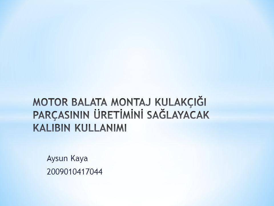 Aysun Kaya 2009010417044